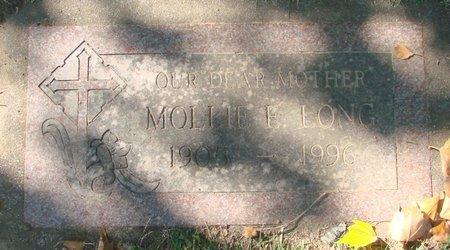 LONG, MOLLIE E - Polk County, Oregon | MOLLIE E LONG - Oregon Gravestone Photos