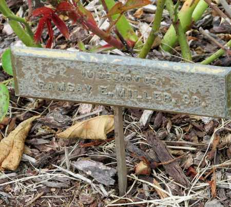 MILLER, RAMSAY E SR - Polk County, Oregon | RAMSAY E SR MILLER - Oregon Gravestone Photos