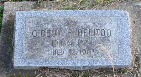 NEWTON, GIDEON A - Polk County, Oregon | GIDEON A NEWTON - Oregon Gravestone Photos
