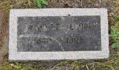 REDDEKOPP, DAVID - Polk County, Oregon | DAVID REDDEKOPP - Oregon Gravestone Photos