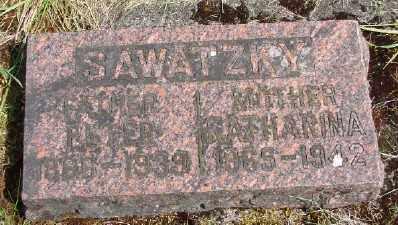 SAWATZKY, PETER - Polk County, Oregon | PETER SAWATZKY - Oregon Gravestone Photos