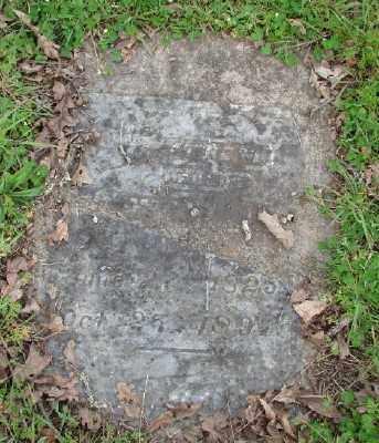 SHAW, WILLIAM PRESTON - Polk County, Oregon | WILLIAM PRESTON SHAW - Oregon Gravestone Photos
