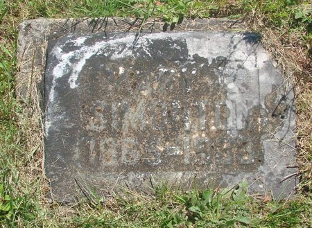 DEMPSEY, MARY LUCINDA - Polk County, Oregon | MARY LUCINDA DEMPSEY - Oregon Gravestone Photos