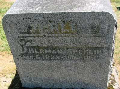 SPERLING, HERMAN - Polk County, Oregon   HERMAN SPERLING - Oregon Gravestone Photos