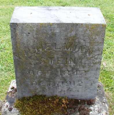 STEIN, WILHELMINA - Polk County, Oregon | WILHELMINA STEIN - Oregon Gravestone Photos