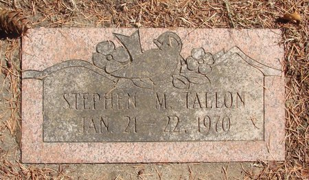 TALLON, STEPHEN MICHAEL - Polk County, Oregon | STEPHEN MICHAEL TALLON - Oregon Gravestone Photos