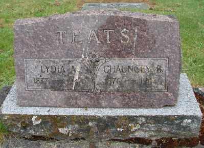 TEATS, LYDIA A - Polk County, Oregon | LYDIA A TEATS - Oregon Gravestone Photos