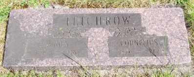 TEICHROW, AGNES - Polk County, Oregon | AGNES TEICHROW - Oregon Gravestone Photos