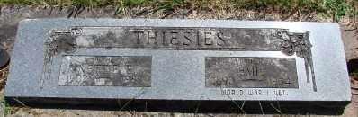 THIESIES, NETTIE E - Polk County, Oregon   NETTIE E THIESIES - Oregon Gravestone Photos