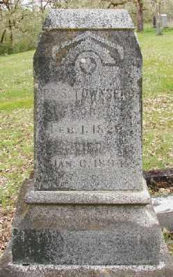 TOWNSEND, IRA S - Polk County, Oregon | IRA S TOWNSEND - Oregon Gravestone Photos