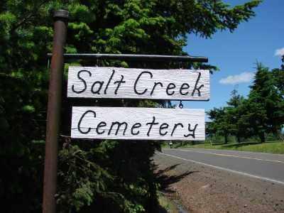 VIEW, SALT CREEK CEMETERY - Polk County, Oregon | SALT CREEK CEMETERY VIEW - Oregon Gravestone Photos