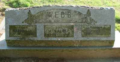 WEBB, MERRILL A - Polk County, Oregon | MERRILL A WEBB - Oregon Gravestone Photos