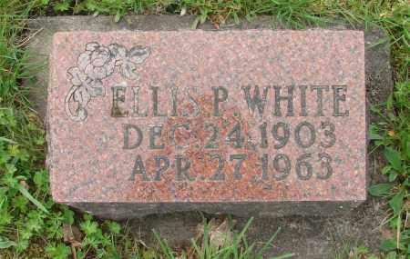 WHITE, ELLIS P - Polk County, Oregon | ELLIS P WHITE - Oregon Gravestone Photos