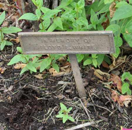 WHITE, FLOYD E - Polk County, Oregon | FLOYD E WHITE - Oregon Gravestone Photos