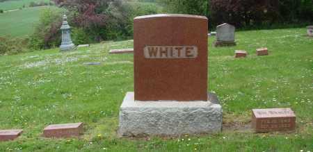WHITE, WILLIAM WESLEY - Polk County, Oregon | WILLIAM WESLEY WHITE - Oregon Gravestone Photos