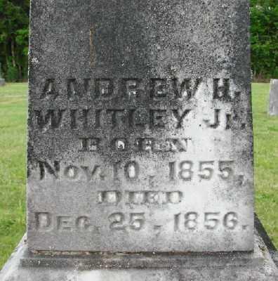 WHITLEY, ANDREW H - Polk County, Oregon   ANDREW H WHITLEY - Oregon Gravestone Photos