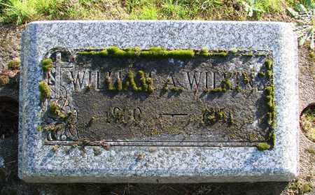 WILKINS, WILLIAM A - Polk County, Oregon | WILLIAM A WILKINS - Oregon Gravestone Photos