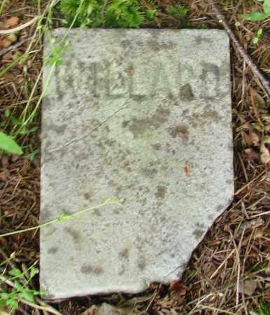 BROUGHTON, WILLARD E - Tillamook County, Oregon | WILLARD E BROUGHTON - Oregon Gravestone Photos