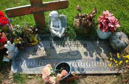 COLLEKNON, JANICE A - Tillamook County, Oregon   JANICE A COLLEKNON - Oregon Gravestone Photos
