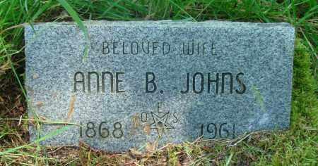 JOHNS, ANNE B - Tillamook County, Oregon | ANNE B JOHNS - Oregon Gravestone Photos