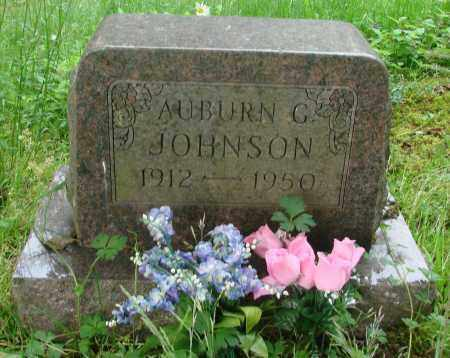 JOHNSON, AUBURN C - Tillamook County, Oregon   AUBURN C JOHNSON - Oregon Gravestone Photos