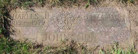 JOHNSON, CHARLES J - Tillamook County, Oregon | CHARLES J JOHNSON - Oregon Gravestone Photos