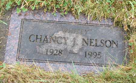 NELSON, CHANCY J - Tillamook County, Oregon   CHANCY J NELSON - Oregon Gravestone Photos
