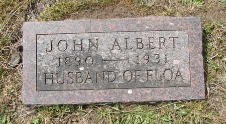 NELSON, JOHN ALBERT - Tillamook County, Oregon | JOHN ALBERT NELSON - Oregon Gravestone Photos