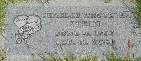 STEIN, CHARLES H - Tillamook County, Oregon   CHARLES H STEIN - Oregon Gravestone Photos