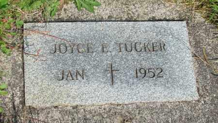 TUCKER, JOYCE E - Tillamook County, Oregon | JOYCE E TUCKER - Oregon Gravestone Photos