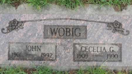 WOBIG, JOHN - Washington County, Oregon | JOHN WOBIG - Oregon Gravestone Photos