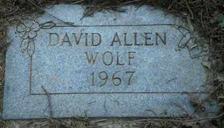 WOLF, DAVID ALLEN - Washington County, Oregon | DAVID ALLEN WOLF - Oregon Gravestone Photos