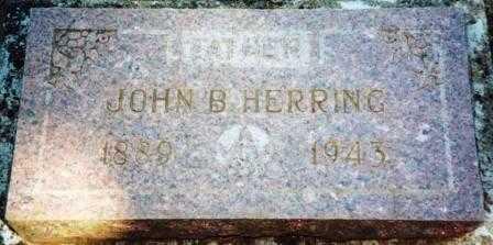 HERRING, JOHN BLAND, SR. - Yamhill County, Oregon | JOHN BLAND, SR. HERRING - Oregon Gravestone Photos