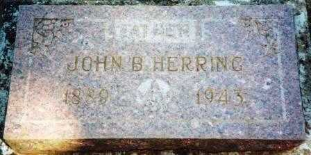 HERRING, JOHN BLAND, SR. - Yamhill County, Oregon | JOHN BLAND, SR. HERRING - Oregon Gravestone Photos
