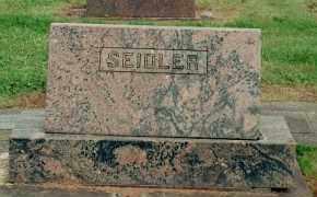 SEIDLER, AMY MINA - Yamhill County, Oregon | AMY MINA SEIDLER - Oregon Gravestone Photos