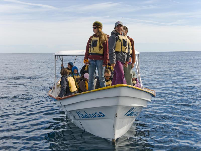 Marine Conservation Course