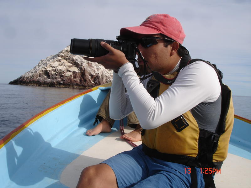 Marine Mammal Researcher