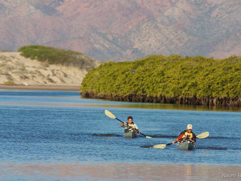 Kayaking in Estero Santa Rosa - Photo by Naomi Blinick