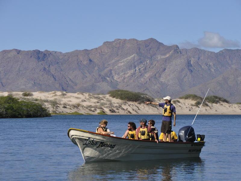 Students exploring the marine environment - Photo by Naomi Blinick
