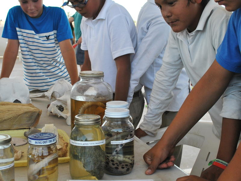 By-catch Environmental Education - Photo by Maria Johnson