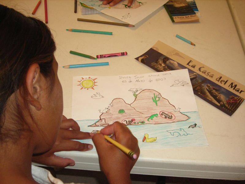 Environmental Ed Drawing - Photo by Maria Johnson