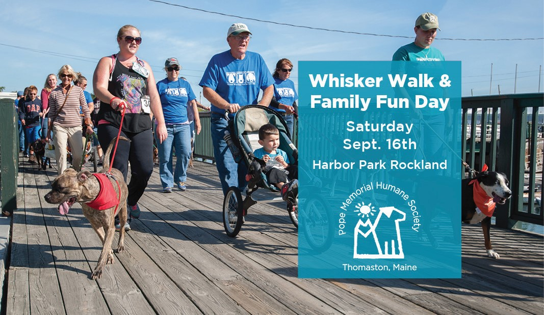 whisker-walk--sponsor