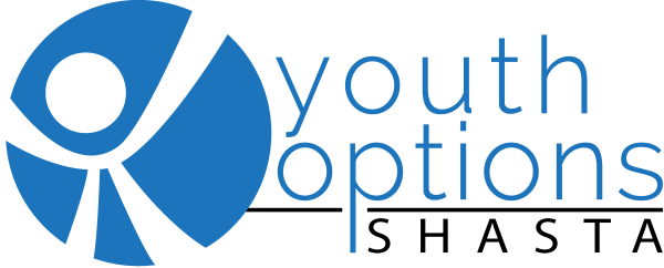 Youth Options Mentoring logo