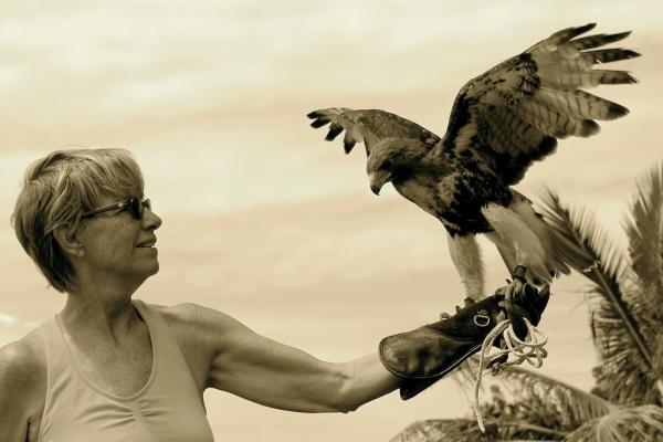St. Croix Avian Sanctuary logo