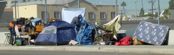 Carson Lions Homeless Fund logo