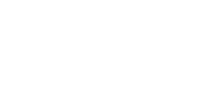 Opportunity Village logo