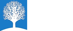 Youth Champions  logo
