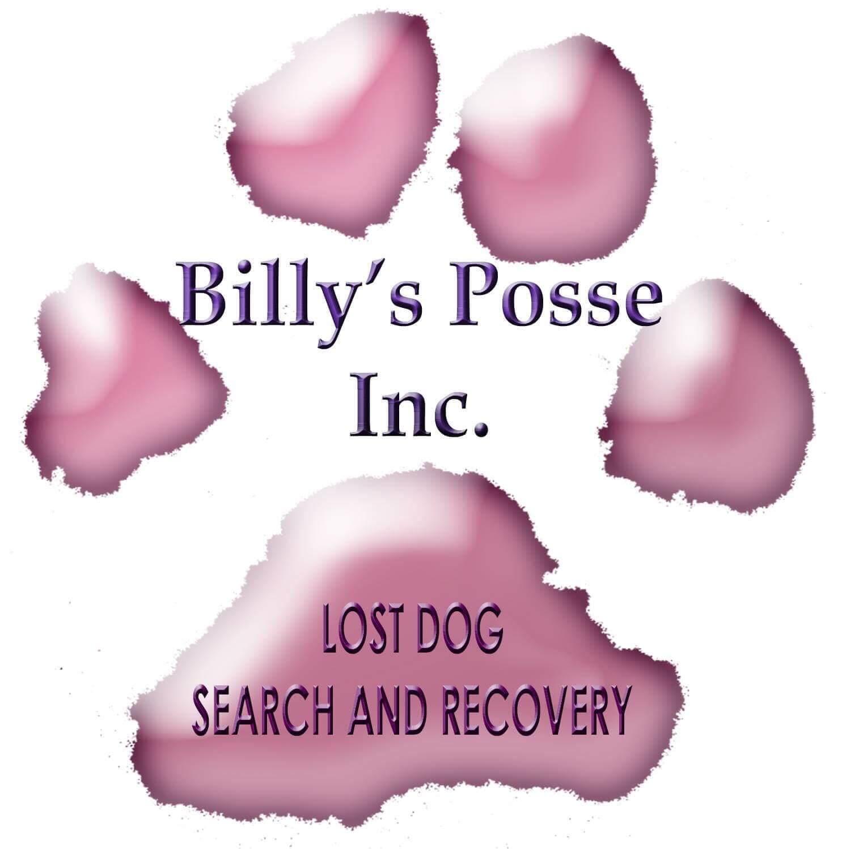 Billy's Posse