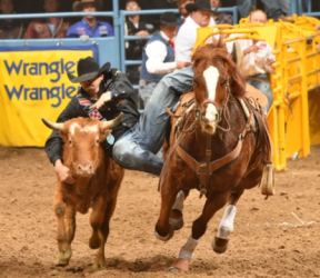 images.raceentry.com/infopages/chas-b-davis-memorial-prca-rodeo-infopages-12506.png