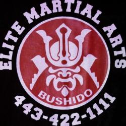 images.raceentry.com/infopages/ema-samurai-5k-run--infopages-5682.png